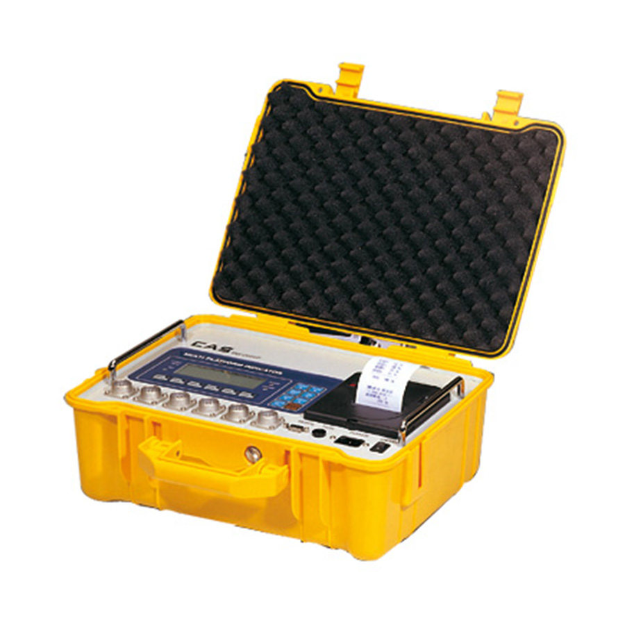 Cas Rw 2601p Vehicle Weighing Scale Indicator
